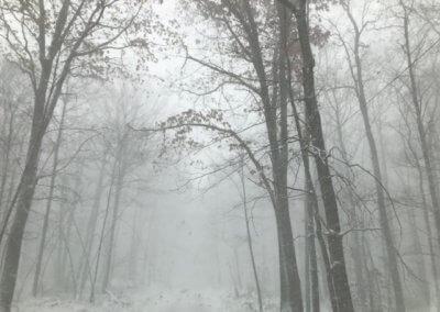 Dot Sisler Winter Wonderland at Deep Creek Lake, MD