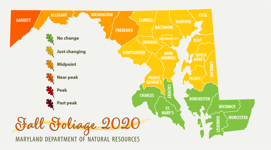Maryland Fall Foliage Map 2020 - October 1