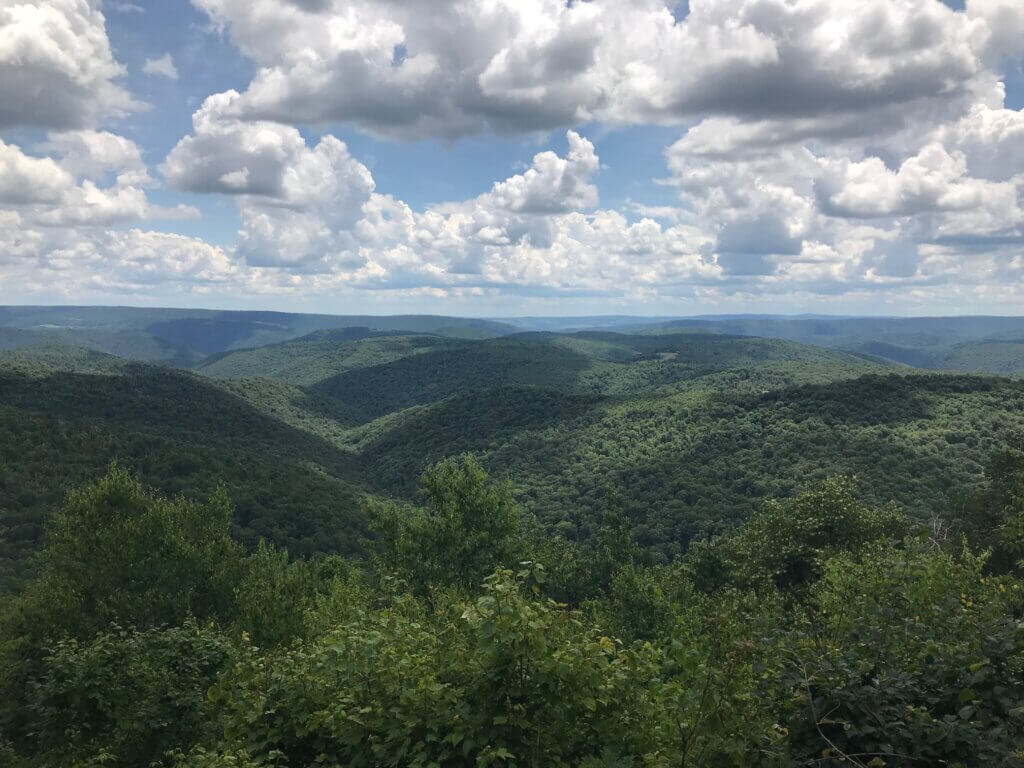 Meadow mountain Trail Overlook 7-12-20