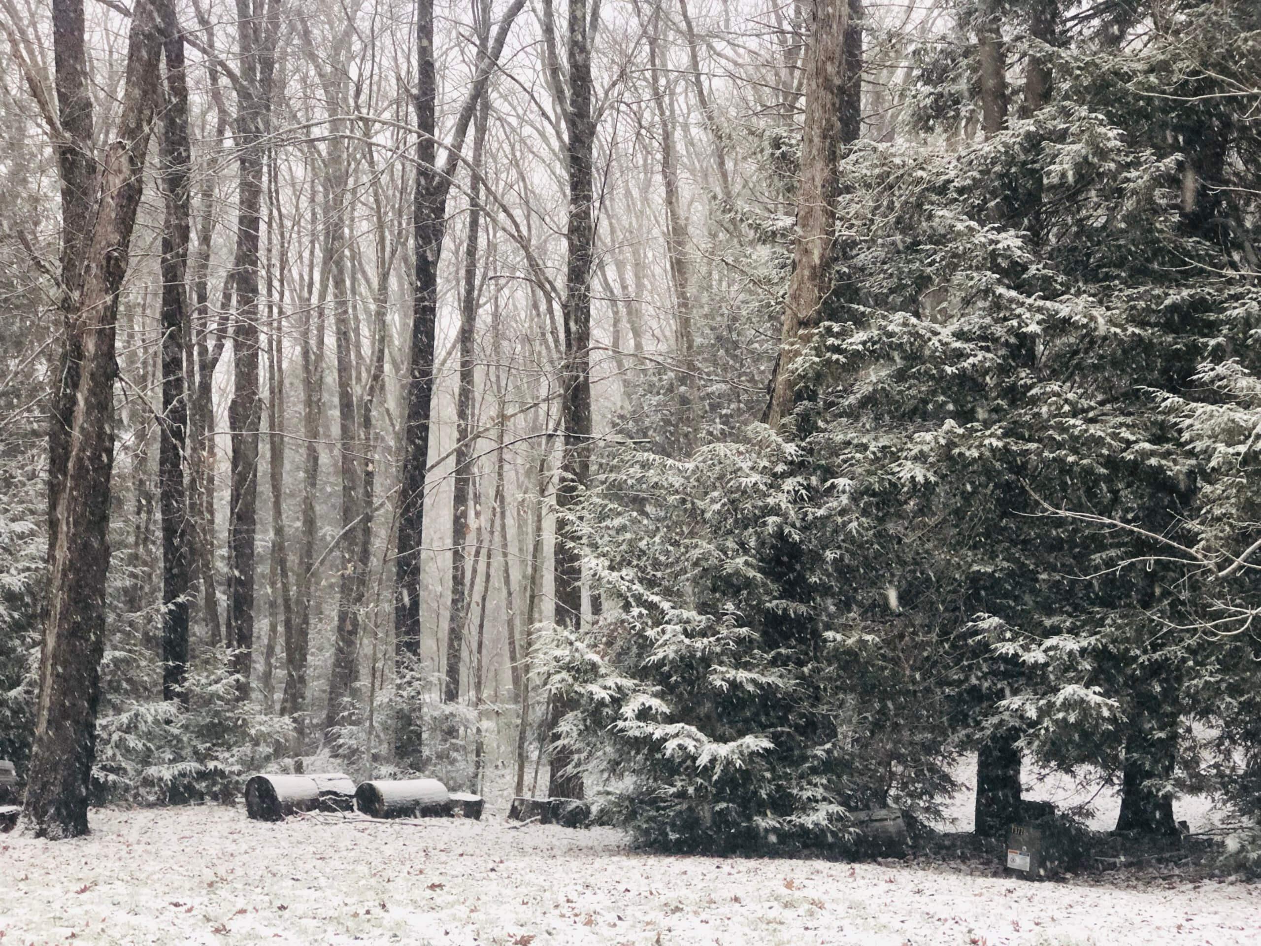 December Weather at Deep Creek Lake, MD