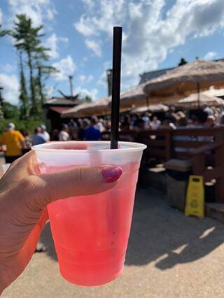 Patti Prokop Berry Drink at Deep Creek Lake, MD