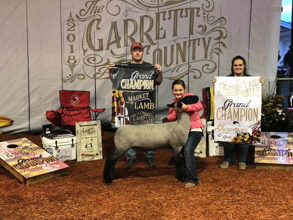Grand Champion Market Lamb Grand Champion Showman Lily Zimmerman