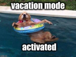 vacation at Deep Creek Lake, MD meme